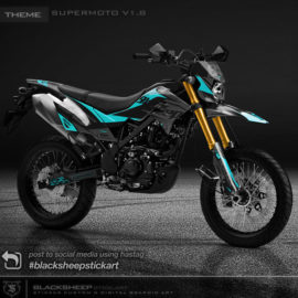Decal sticker Kawasaki DTRACKER supermoto v1.8